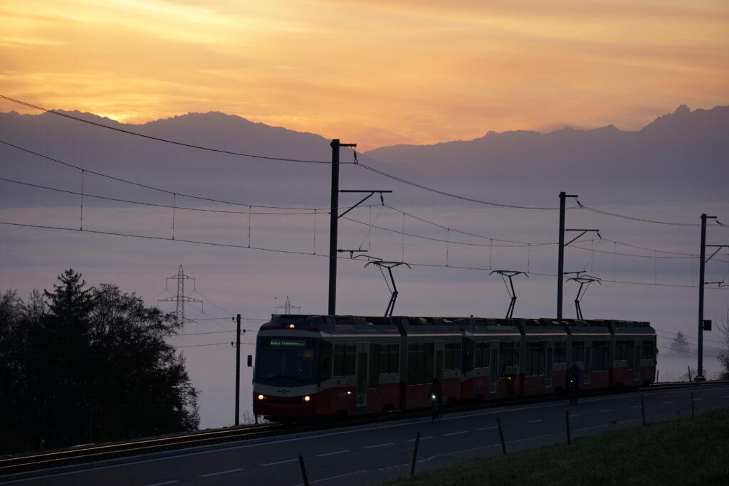 Morgenstimmung in Scheuren